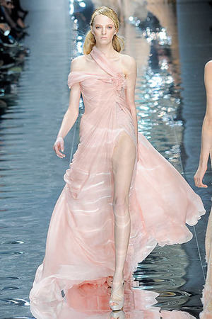Elie saab spring 2010 couture blush gown profile freeasy for Elie saab blush wedding dress